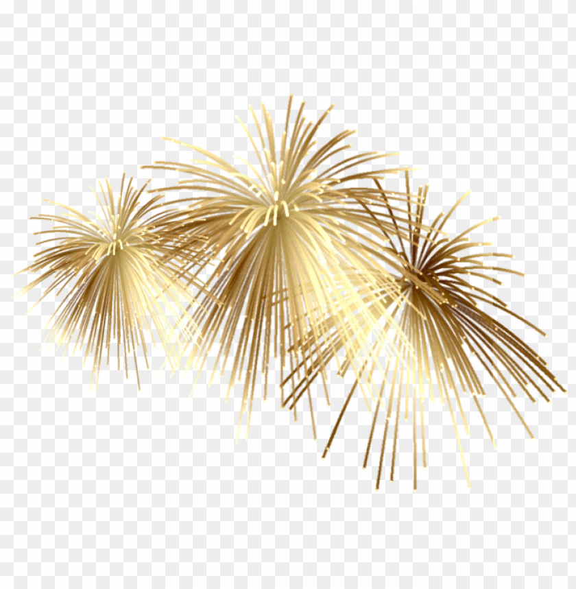 Fireworks Png Transparent Background 2020