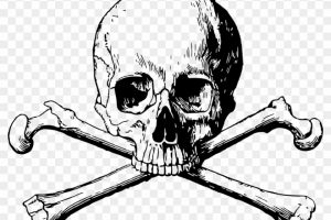 Skull and Crossbones Png Transparent Background 2019