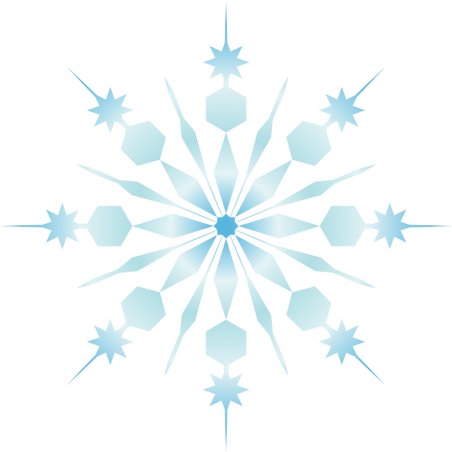 Snowflake Logo No Background