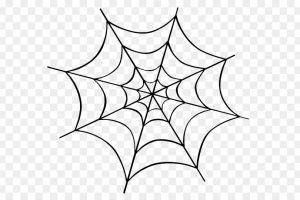 Spider Web Png Transparent Background 2019